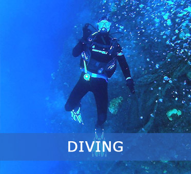 home diving